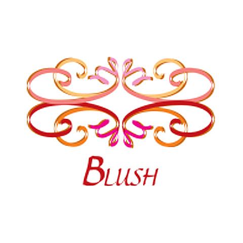 Blush Boutique - Thousand Oaks, CA 91362 - (805)497-6100 | ShowMeLocal.com