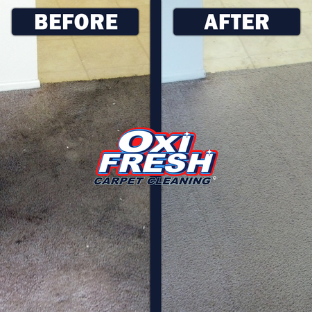 Image 3 | Oxi Fresh Carpet Cleaning