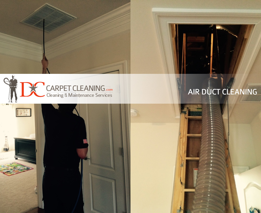 DC Carpet Cleaning image 10