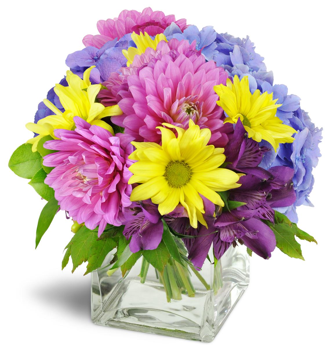 Avas Rainflorist 3002 Middletown Rd Bronx Ny Florists Mapquest