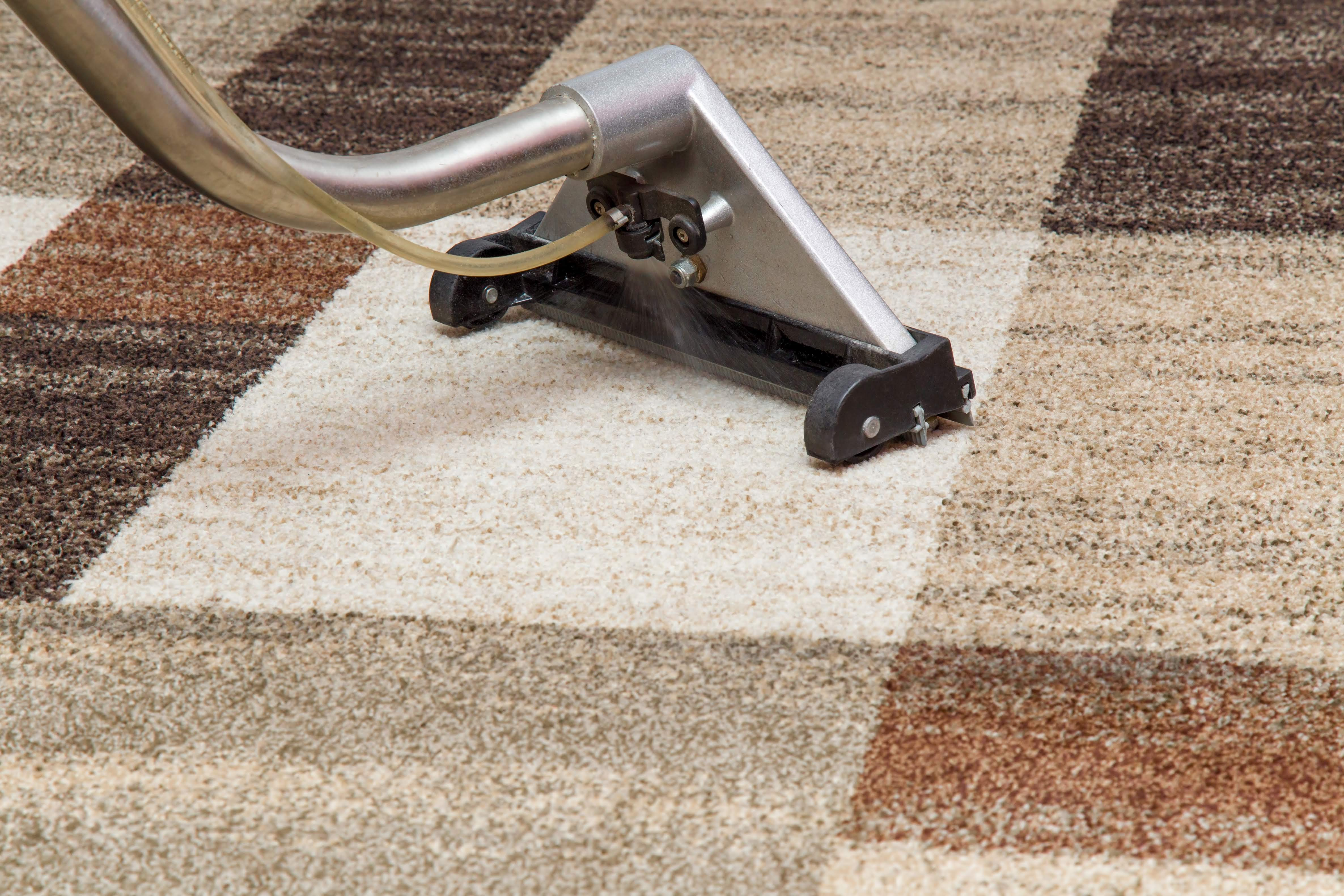 Clover Carpet Cleaning, LLC image 2