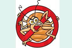 NYC Pest Control image 1