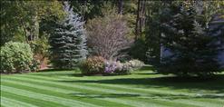 Frye's Landscaping Service Inc image 1