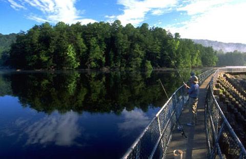 Bristol / Kingsport KOA Holiday in Blountville, TN, photo #21