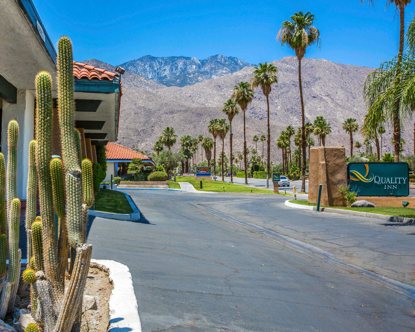Pet Friendly Hotels In Palm Springs Ca Area