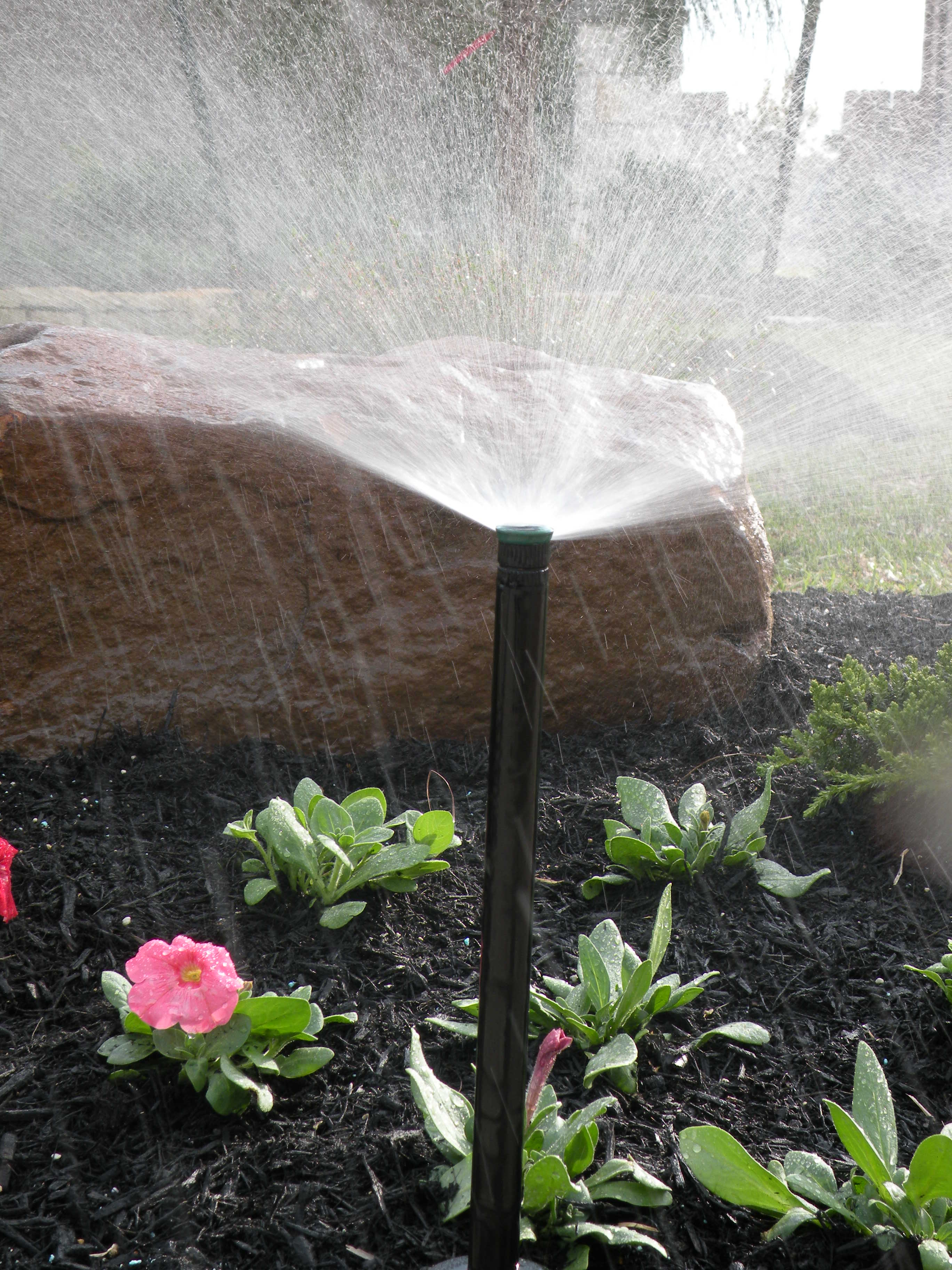 PGS Landscaping image 0