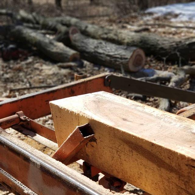 Michigan Timber Shack image 6