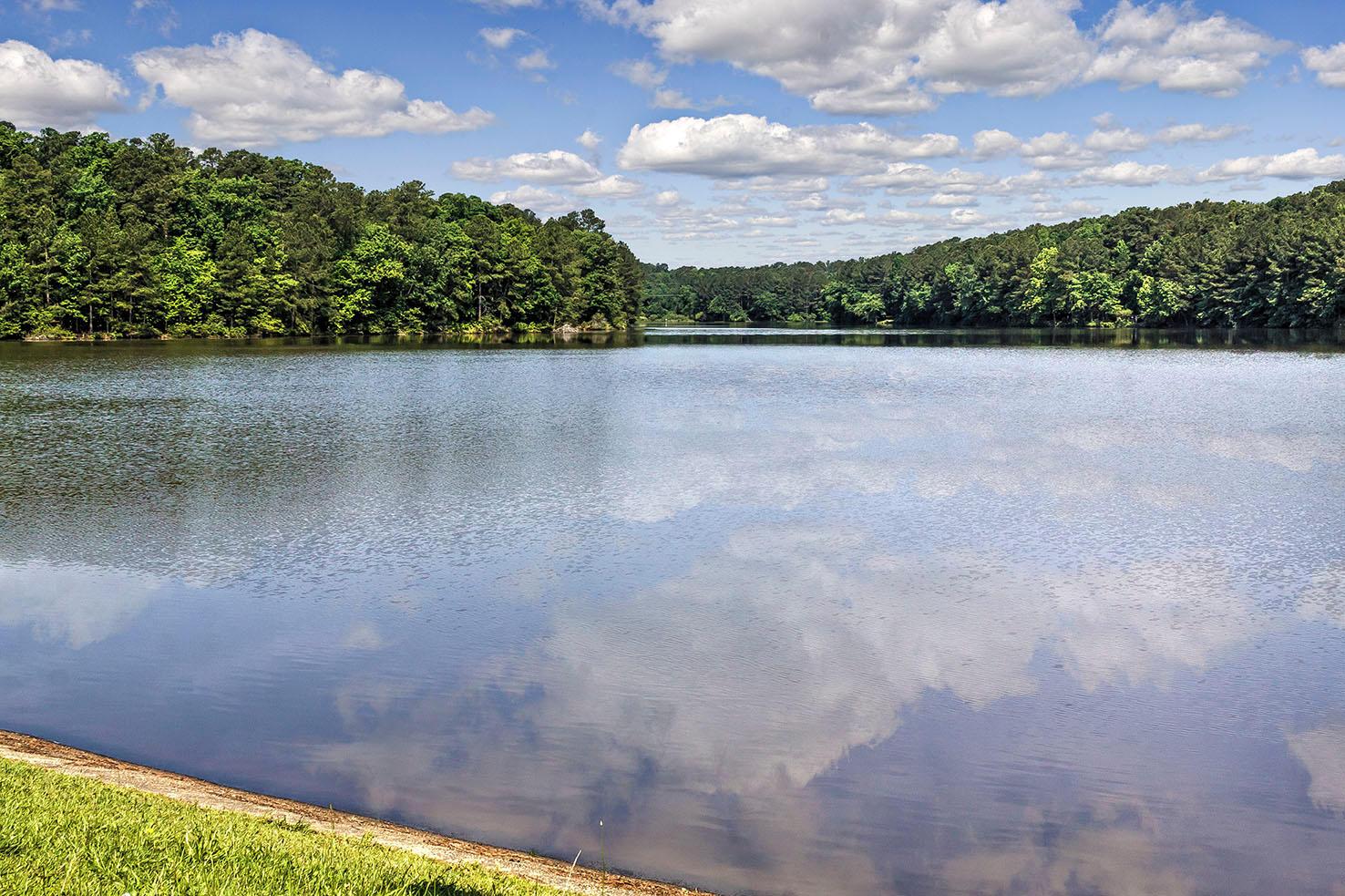 Camden Lake Pine Apartments image 13