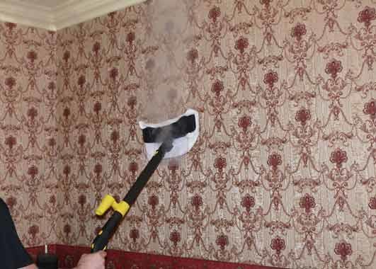 Usługi-Pogotowie Sprzątające Viktor PHU Jacek Julkowski