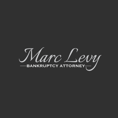 Marc H Levy - Attorney