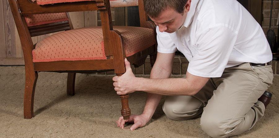 Absolute Carpet Care Inc image 3