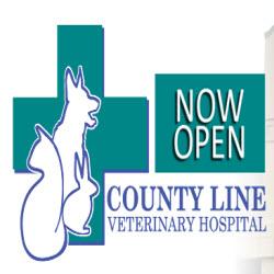county line veterinary hospital in jackson nj   848 245
