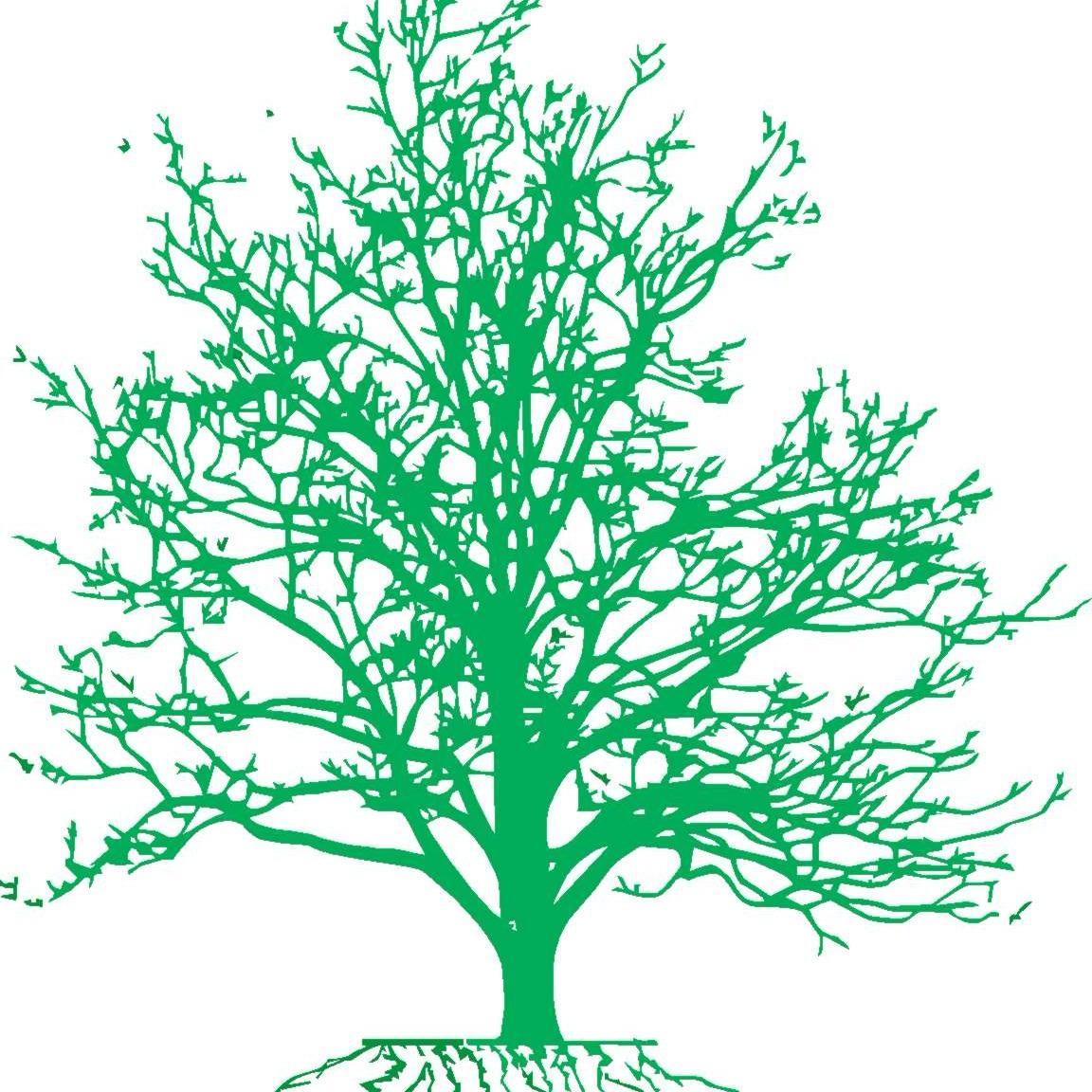 Brummer's Tree and Shrub LLC