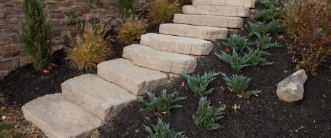 A Plus Landscaping LLC image 1
