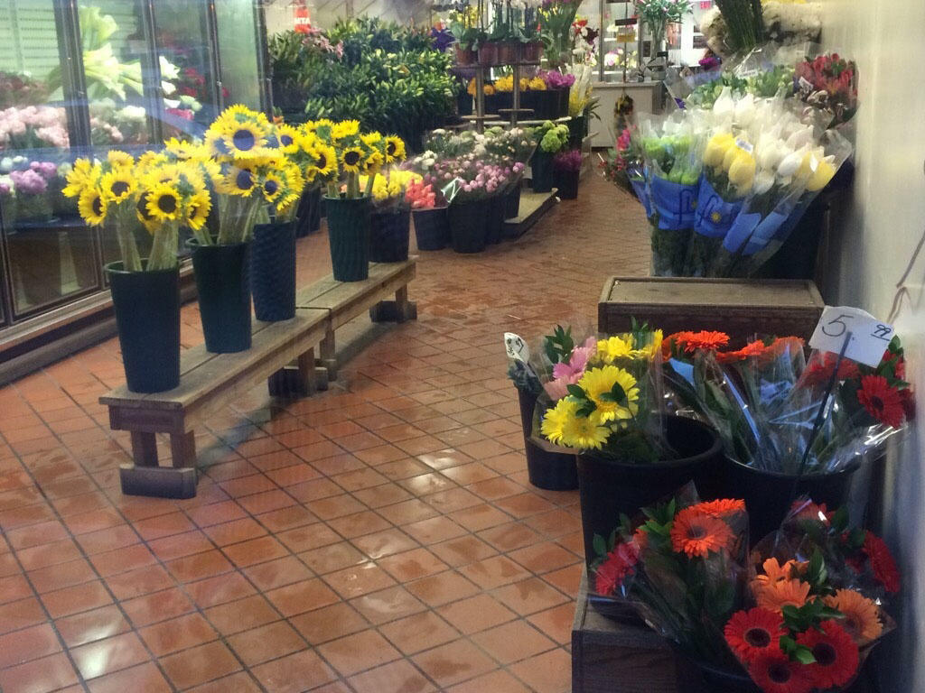 Compo Farm Flowers image 2
