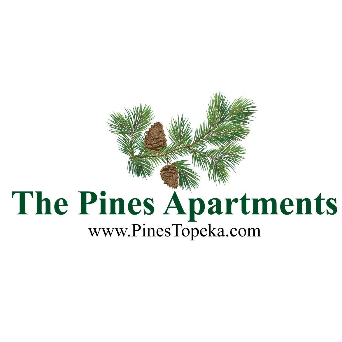 The Pines Apartments image 5