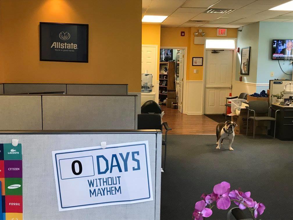 Gregory Kramer: Allstate Insurance image 4