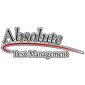 Absolute Pest Management - Buda, TX - Pest & Animal Control