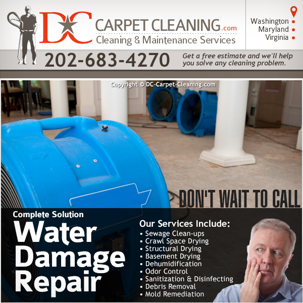 DC Carpet Cleaning image 8