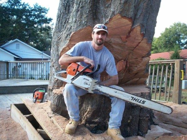 Karney Tree Service image 3