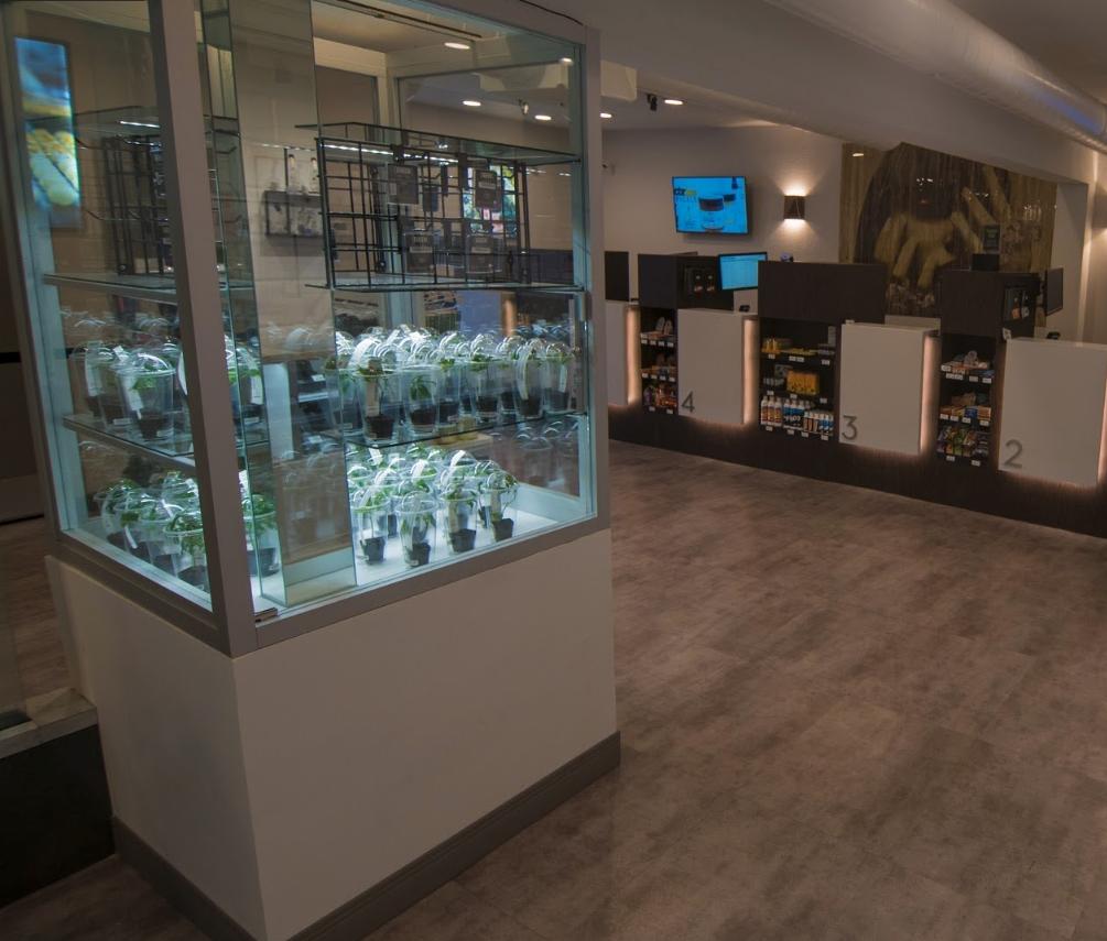The Green Solution Recreational Marijuana Dispensary image 14