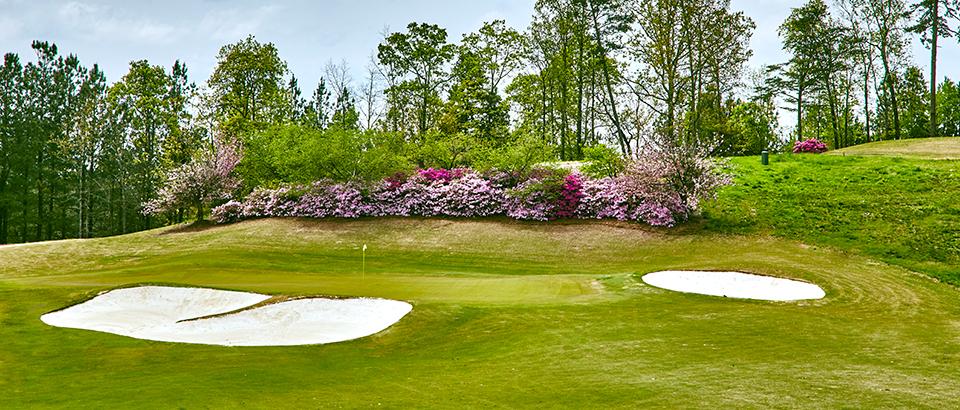 Windermere Golf Club image 0