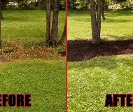 All American Property Maintenance LLC image 1