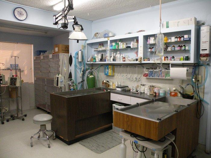 VCA College Park - Ana Brook Animal Hospital image 5