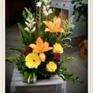 Michele's Floral & Gifts - Branson, MO 65616 - (417)334-6386 | ShowMeLocal.com