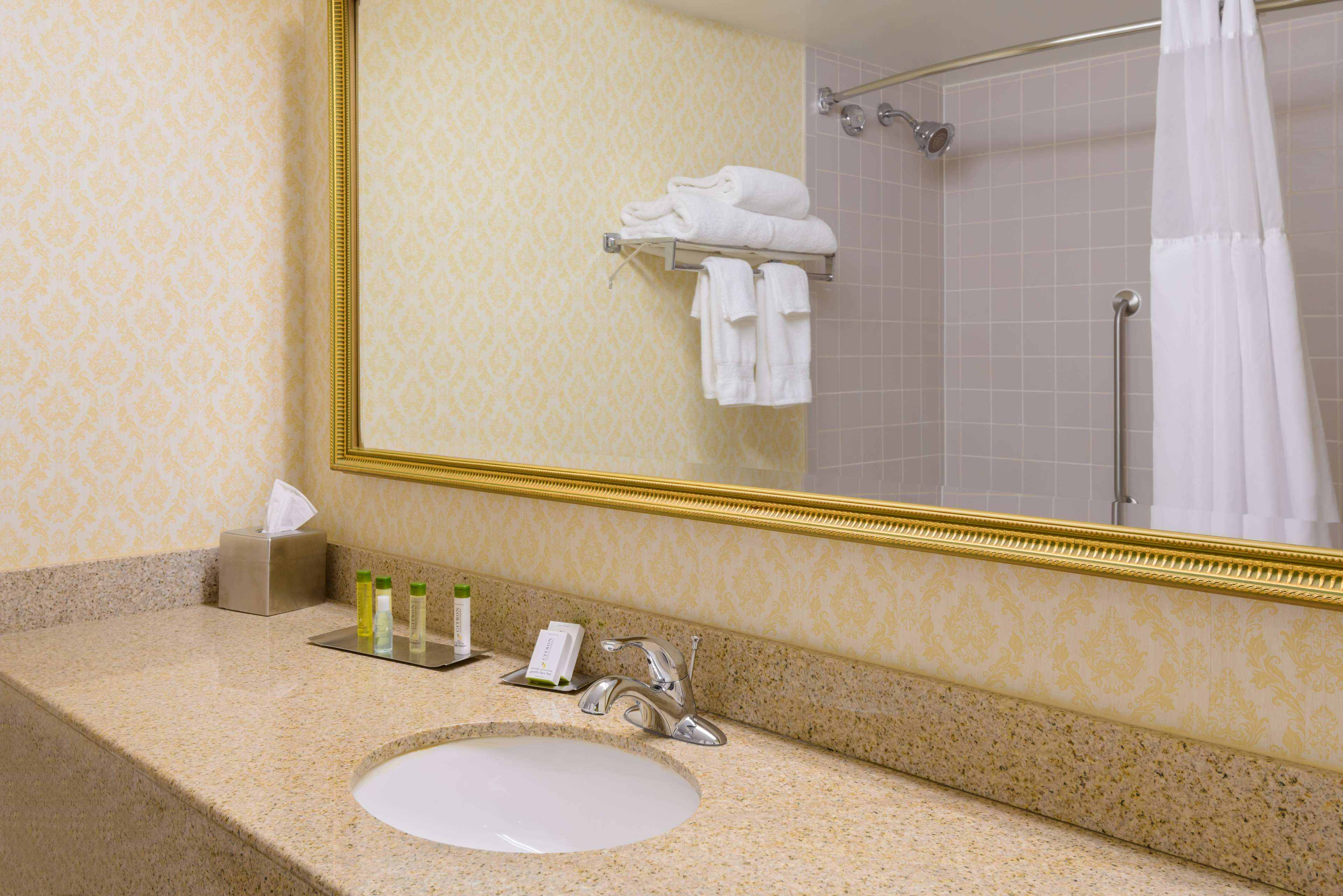 DoubleTree by Hilton Hotel Richmond - Midlothian image 7