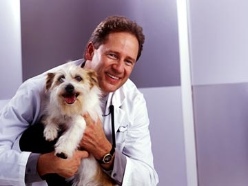 VCA Westlake Village Animal Hospital image 0
