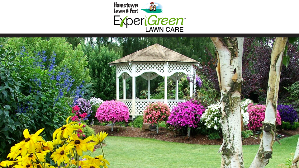 Hometown Lawn & Pest image 0