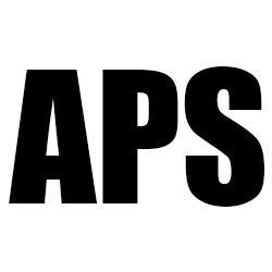 Auto Parts & Service, Inc.