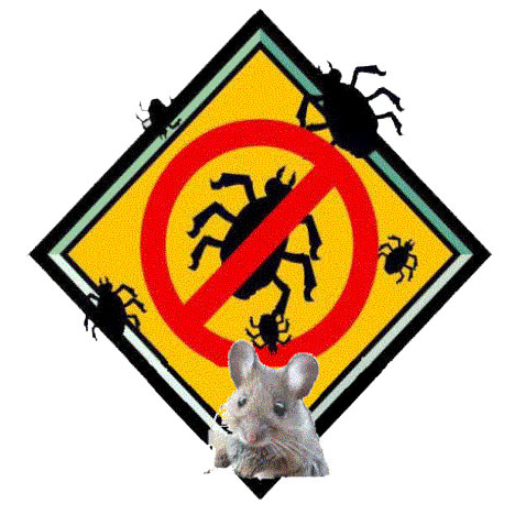 Keen's Pest Control Services image 2
