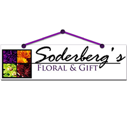 Soderberg's Floral & Gift - Minneapolis, MN - Florists