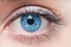 Eyes On Texas Vision Care image 4