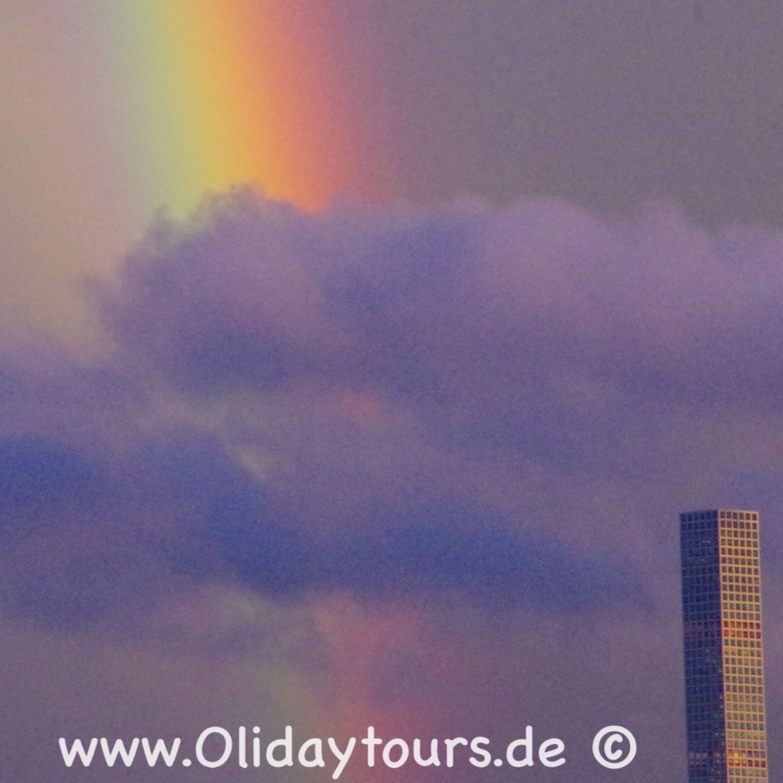 OlidayTours image 35