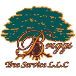 Briggs Tree Service LLC