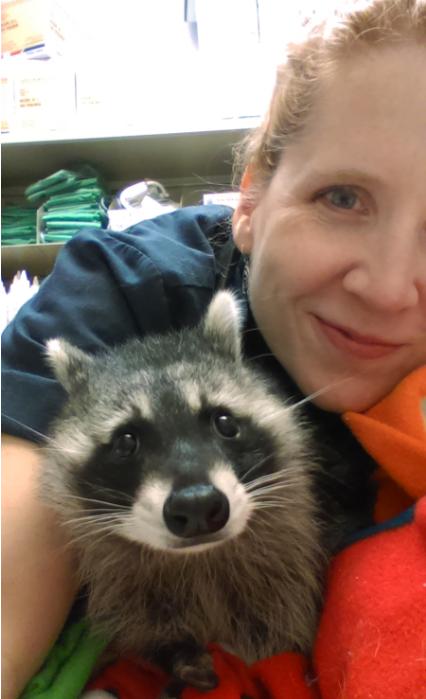 Parker Animal & Bird Clinic in Plano, TX, photo #3