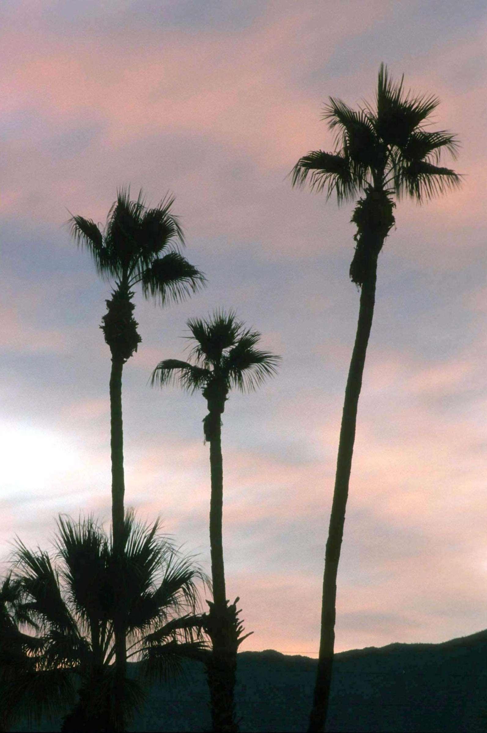 Hilton Garden Inn Palm Springs/Rancho Mirage image 32