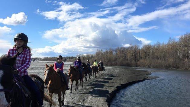 Alaska Horse Adventures, LLC image 0