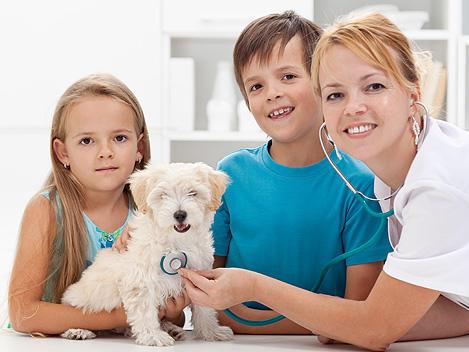 Junaluska Animal Hospital image 1