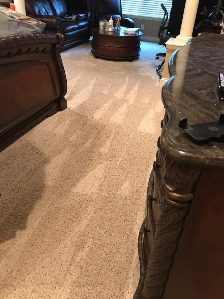 Stains Be Gone Carpet Cleaning, LLC image 10
