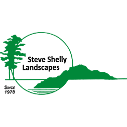 Steve Shelly Landscapes image 0