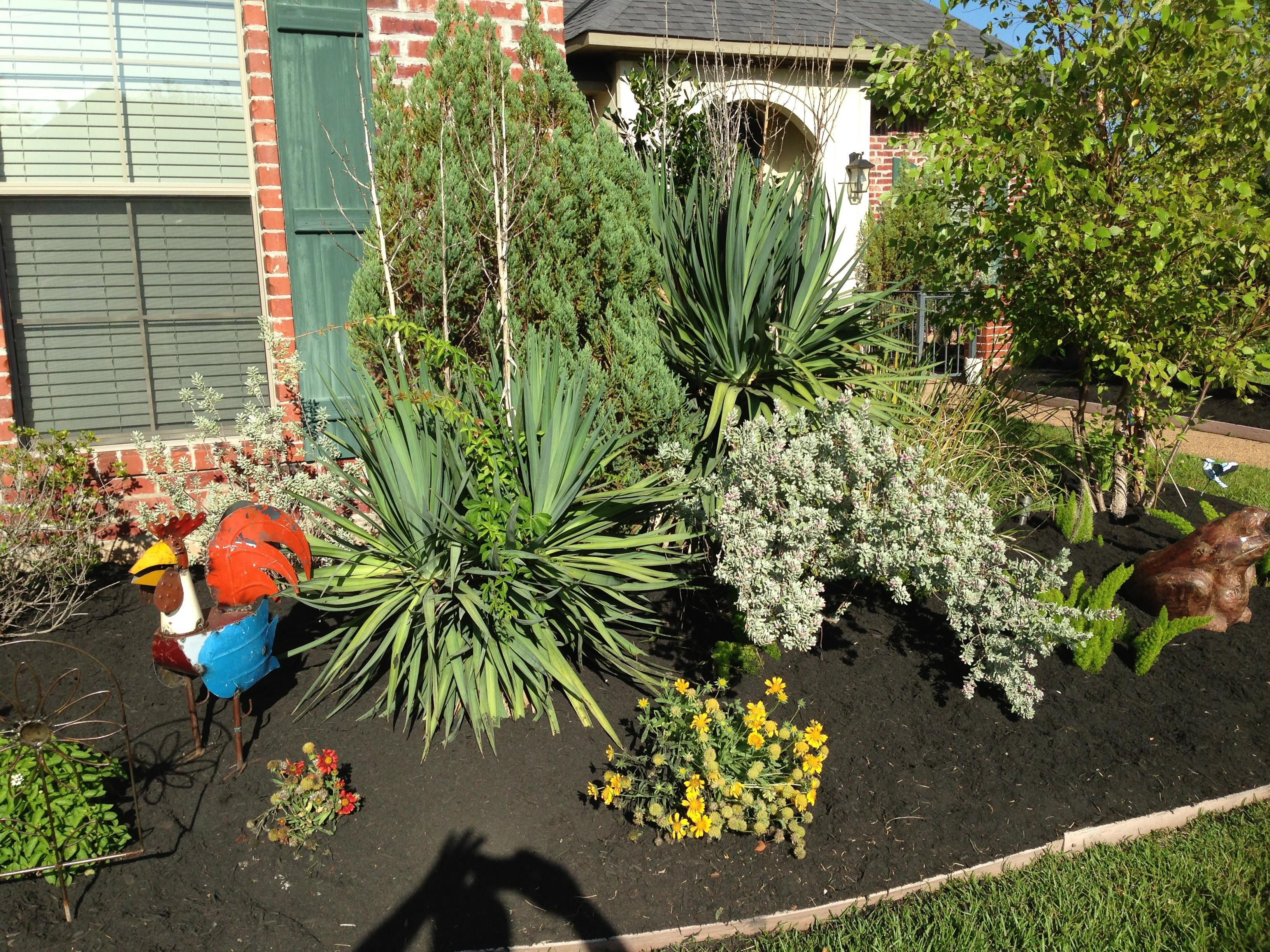 Cornelius Lawn & Landscaping image 0