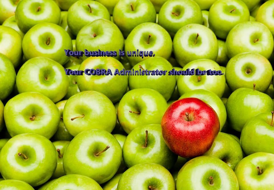 COBRA Help image 3