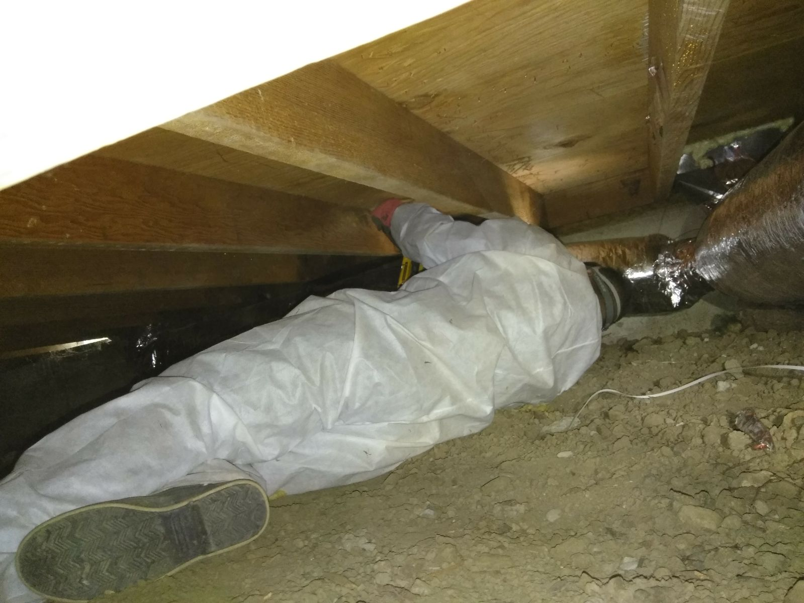 Rodent Solutions Pro - Rodent Proofing | Attic Insulation Removal Oakland, CA image 8