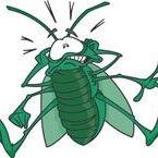 Bugs Away Pest Control image 0
