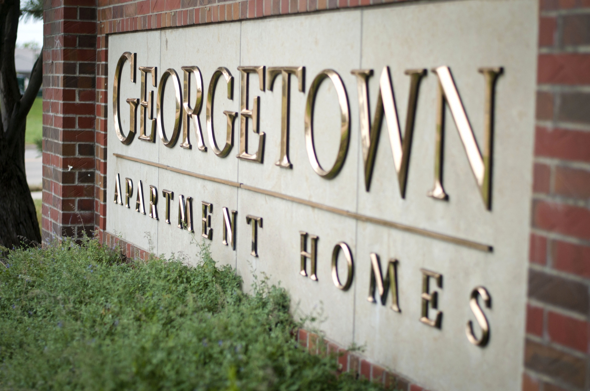 Georgetown Apartment Homes image 3