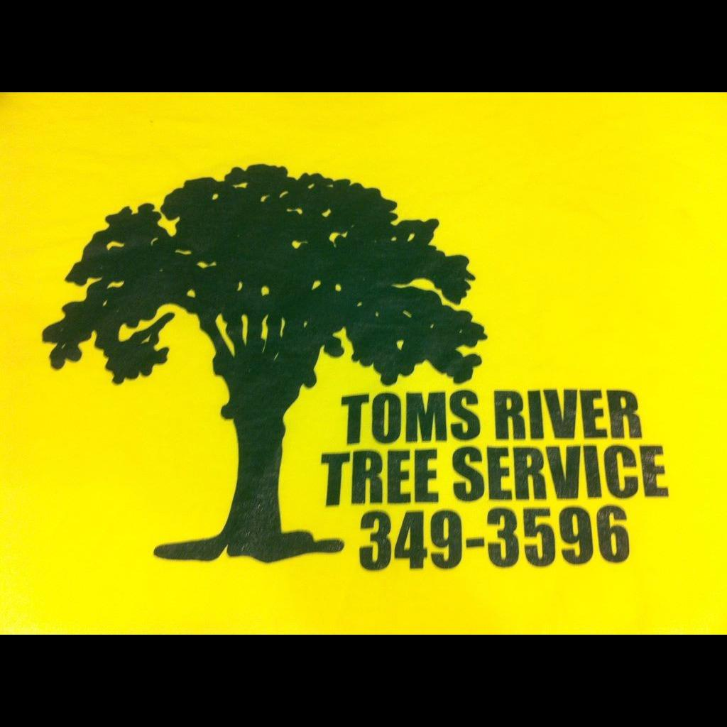 Toms River Tree Service image 10